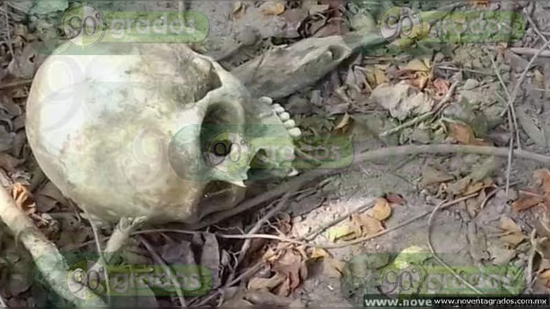 Cuatro cráneos humanos y restos óseos en tiradero de cadáveres en Eduardo Neri, Guerrero
