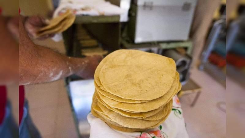 Crean una tortilla de cebada, para combatir la obesidad