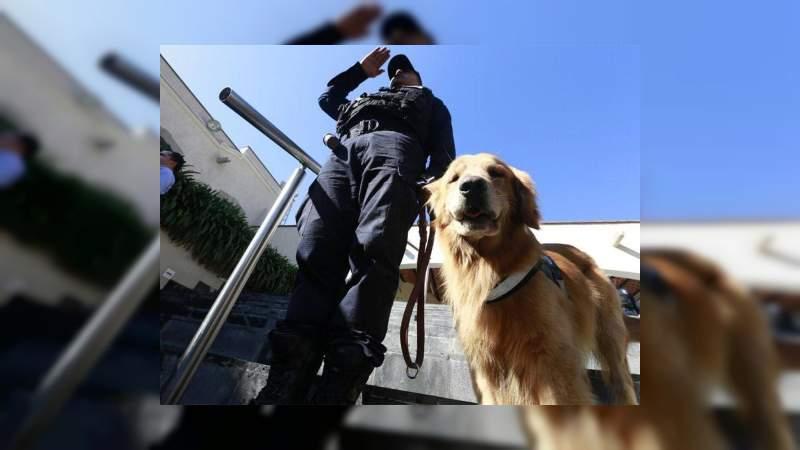No sacrificaremos a ningún perro de la Policía Federal: SSPC