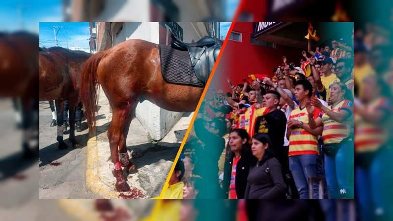 Fanáticos de Monarcas provocaron estampida de caballos en Toluca