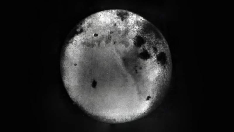 Revelan fotografías inéditas del lado oscuro de la Luna