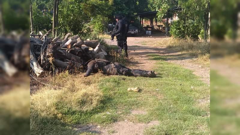 Habría 11 policías desaparecidos en Aguililla, Michoacán