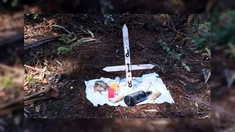 Hallan a bebé muerto tras supuesto ritual satánico