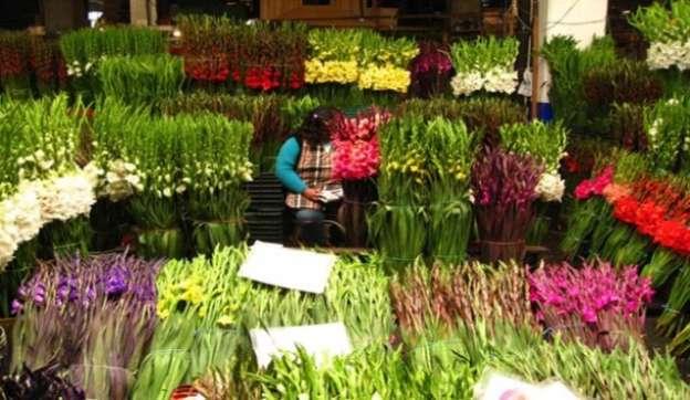 Productores listos para venta de flores en el Día del Amor y la Amistad