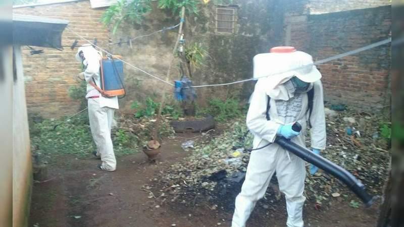 En México, 135 muertes por dengue en 2019
