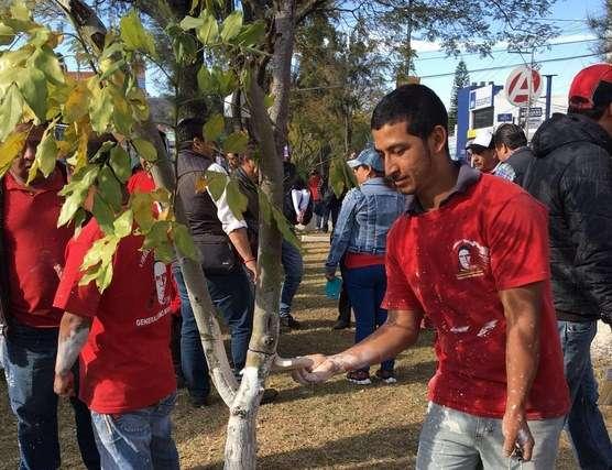 Morelia: Ante visita del Papa Francisco, Ayuntamiento exhorta a mantener limpia la ciudad