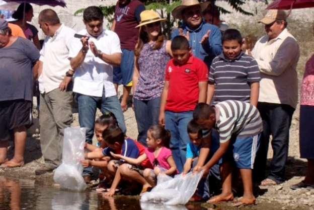 La Compesca retoma el programa de repoblamiento de embalses en Huetamo, Michoacán