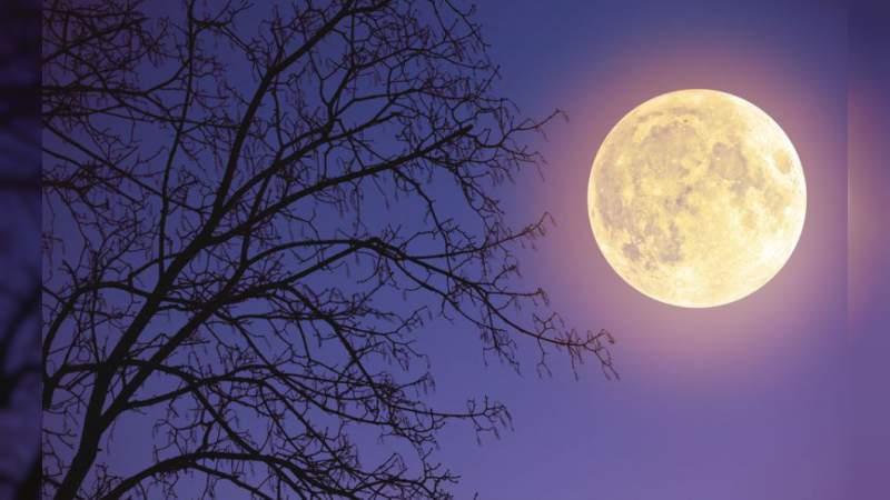 La Luna de Nieve iluminó los cielos del mundo